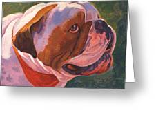 Bully For Me Greeting Card by Shawn Shea