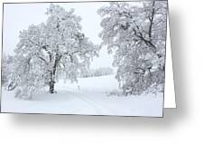 Burr Its Cold Outside Greeting Card by Lydia Warner Miller