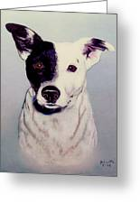 Butch The Smooth Fox Terrier Greeting Card by Bob and Nadine Johnston