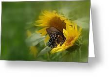 Butterfly Dream Greeting Card by David Gunter