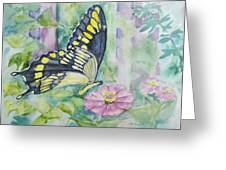Butterfly In My Garden Greeting Card by Judy Loper