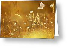 Butterfly Kiss Greeting Card by Torie Tiffany