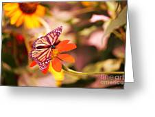 Butterfly On Flower 2 Greeting Card by Artie Wallace