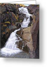 Buttermilk Falls Greeting Card by Glen Heberling
