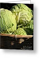 Cabbage Heads Greeting Card by Susan Herber