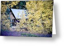 Cabin Hideaway Greeting Card by James BO  Insogna