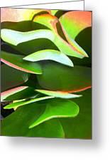 Cactus Wave Greeting Card by Paul Washington