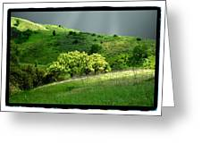 Calabasas Meadow After The Storm Greeting Card by Noah Brooks