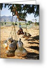 Calabash Gourd Bottles In Mexico Greeting Card by Elena Elisseeva