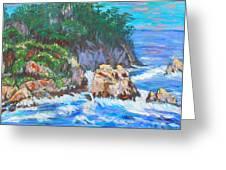California Coast Greeting Card by Carolyn Donnell