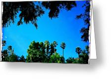 California Dreaming Greeting Card by Nina Prommer