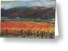 Calistoga Vineyard In Napa Valley By Deirdre Shibano Greeting Card by Deirdre Shibano