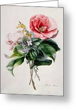 Camellia And Broom Greeting Card by Marie-Anne