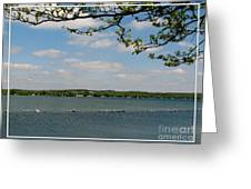 Canandaigua Lake Greeting Card by Rose Santuci-Sofranko