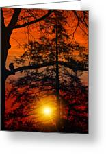 Can't Wait Until Tommorrow Greeting Card by Tom York Images