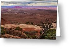 Canyonland Overlook Greeting Card by Robert Bales