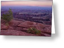 Canyonlands At Dusk Greeting Card by Andrew Soundarajan