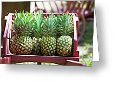 Cart Of Pineapples Greeting Card by Walt Stoneburner