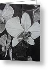 Cascade Of Orchidds Greeting Card by Estephy Sabin Figueroa