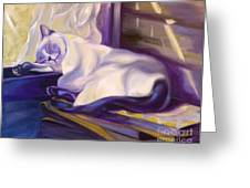 Cat Nap In The Office Greeting Card by Susan A Becker