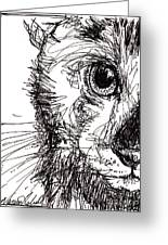 Cat's Eye Greeting Card by Michele Hollister - for Nancy Asbell
