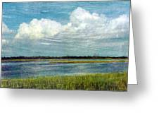 Cedar Key 1 Greeting Card by Bob Senesac