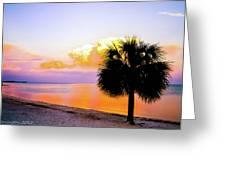 Cedar Key Sunset Greeting Card by Shannon Harrington