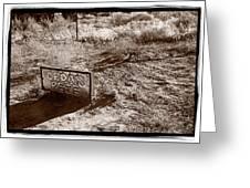 Cedar Pete Gravesite In Grafton Utah Greeting Card by Steve Gadomski