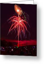 Celebrating America Greeting Card by David Hahn
