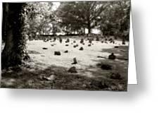 Cemetery At Mud Meeting House Greeting Card by Mark Jordan