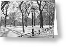 Central Park Snowfall Bw Greeting Card by Andrew Kazmierski