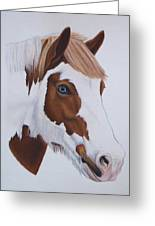 Charlie Greeting Card by Lucy Deane