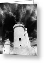 Chateau De Blandy Les Tours Greeting Card by Simon Marsden