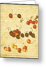 Cherries Greeting Card by Bonnie Bruno