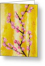 Cherry Blossoms Greeting Card by Paul Tokarski