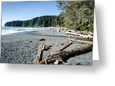 China Wide China Beach Juan De Fuca Provincial Park Vancouver Island Bc Canada Greeting Card by Andy Smy