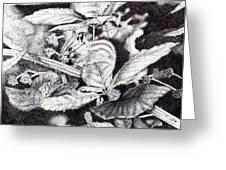 Chipmunk Greeting Card by Inger Hutton
