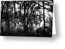 Chokoloskee Mangroves Greeting Card by Rich Leighton