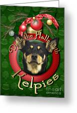 Christmas - Deck The Halls With Kelpies Greeting Card by Renae Laughner