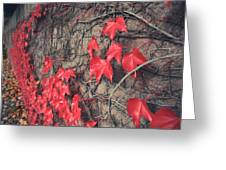 Clinging Greeting Card by Laurie Search