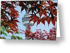 Cn Tower With Japanese Maple Greeting Card by Alfred Ng