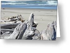 Coastal Driftwood Art Prints Blue Waves Ocean Greeting Card by Baslee Troutman