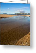 Coastal View Ireland Greeting Card by Andrew  Michael