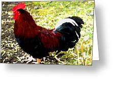 Cock Greeting Card by Roberto Alamino