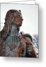 Cold Stare Greeting Card by Jame Hayes