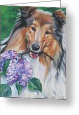 Collie With Lilacs Greeting Card by Lee Ann Shepard