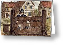 Colonial Stocks Greeting Card by Granger