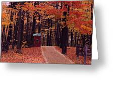 Color Of Fall Greeting Card by Evelyn Patrick