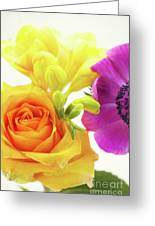 Colored Greeting Card by Angela Doelling AD DESIGN Photo and PhotoArt