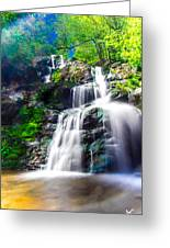 Colorful Stream Greeting Card by Shane York